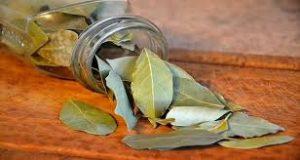 bru%cc%82lez-des-feuilles-de-laurier-dans-la-chambre-et-decouvrez-ce-qui-arrive-en-seulement-10-minutes