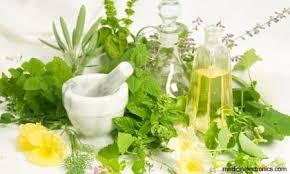 les-plantes-medicinales-page-1