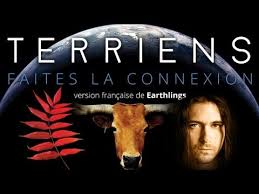 terriens-earthlings-narration-par-maxime-ginolin